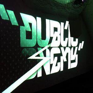 Dublic Enemy pt.4 (2008)
