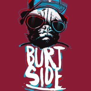 Burtside - Christmas Show on Exestate.co.uk