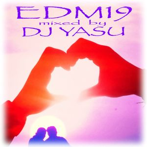 EDM 19