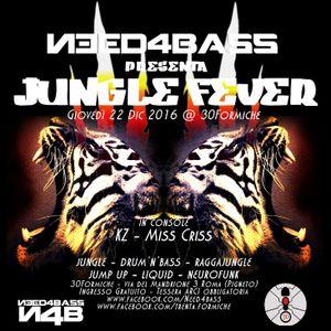 KZ - Jungle Fever N4B Promo Mix