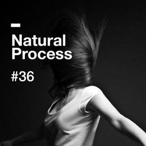 Natural Process #36