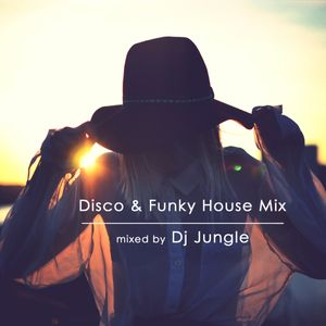 Disco & Funky House Mix - mixed by Dj Jungle