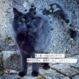 Paco / Risikogruppe - Broken Spring Break