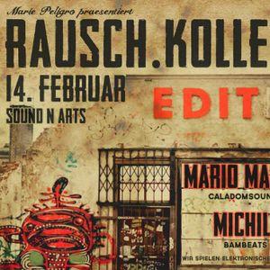 2013-02-14 RAUSCH.KOLLEKTIV, Mario Maser, MichiL