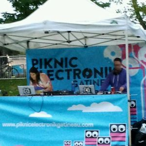 The Latest Artists @ Piknic Electronik