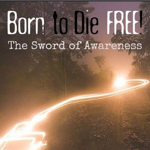B2DF #21: The Sword of Awareness