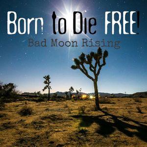B2DF #2: Bad Moon Rising