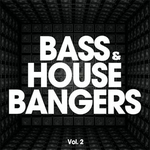 House and Bass Vol 2 - Orbz