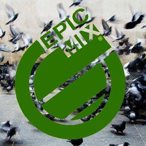 Epic Mix 4