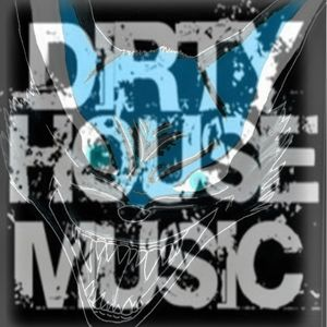 Dirty electro house mix ng sung by molymoly