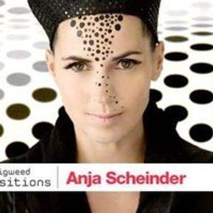 Transitions 518 Anja Schneider