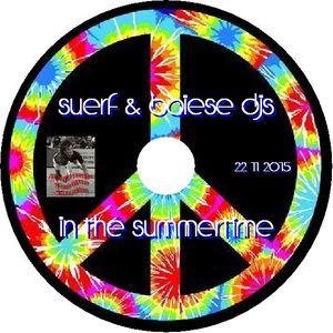Suerf & Baiese Djs - In The Summertime 22 12 2015
