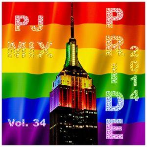 PJ Mix - PRIDE 2014  (v.34)