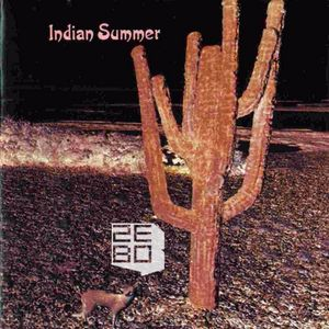 Indian Summer Mix 2010