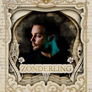 Zonderling @ Hexagon Stage , Tomorrowland 2019