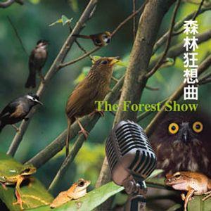 07 晨鳥之歌(純自然聲音)(Bonus 01)