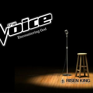 The Voice Part 3 (feat. Mike Plunket)