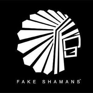 Fake Shamans - Shaman Academy - Lesson 1
