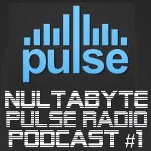 Pulse Radio Podcast #1