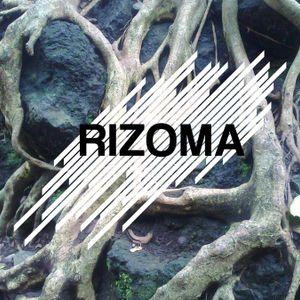 Rizoma 60