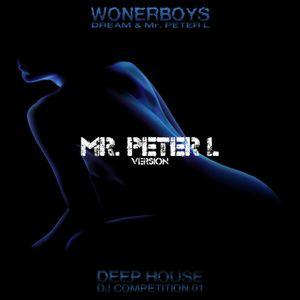 Wonderboys Compilation 1 (Mr Peter L. )