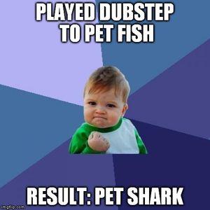 Dubstep is My Favorite DJ