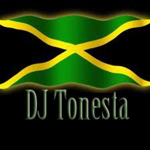 Boom Boom Reggae riddumz