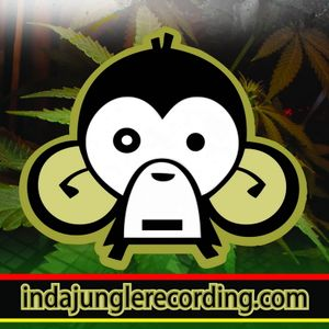 InDaJungle Recording Promo Mix (Liquid)