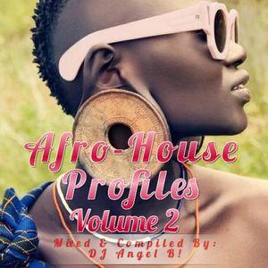 DJ Angel B! Presents: Afro-House Profiles (Volume 2)
