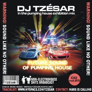 DJ TZESAR - Future Sound Of Pumping House (CLUBSTARS CD vol.25)