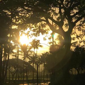 Good Morning Hawaii