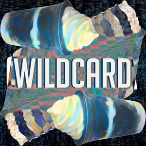 Wildcard - Ghetto Funk Slushies (Live from Wintour)
