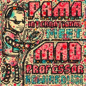 CJ Dread Captures - Mad Professor Rewired! In Dub Interview