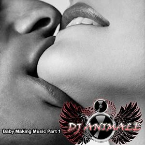 DJ ANIMALE Presents Baby Making Music Part 1