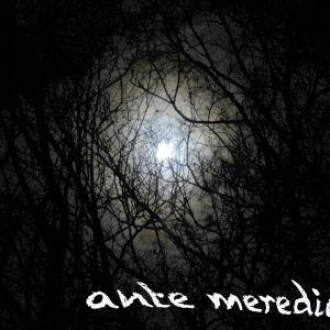 Ante Merediem 04