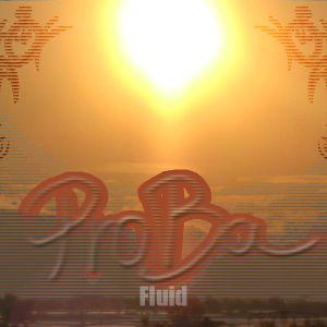 Proba - Fluid-Mix (2012)