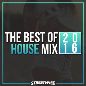The Best Of 2016 House Mix