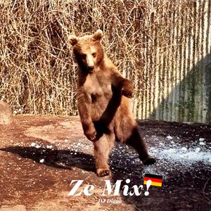 Ze Mix by Digga (2013)