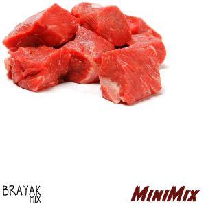MiniMix I