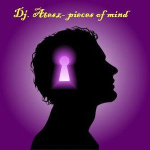 Dj. Atesz- Pieces of mind