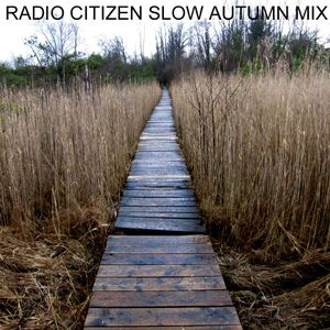 Radio Citizen - Slow Autumn Mix 2010