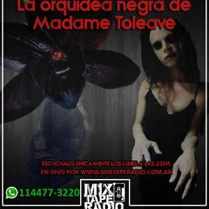 La orquidea negra de Madame Toleave