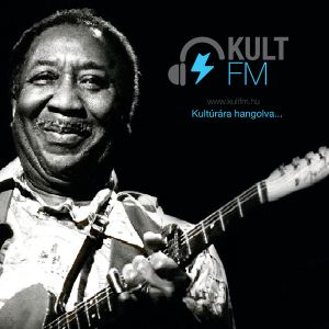 The Story Of Jazz #17 - Muddy Waters