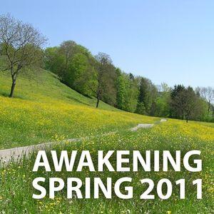 Awakening Spring 11 (mixed by Edvinas)