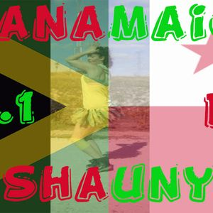 Panamaica Vol 1- By Shauny