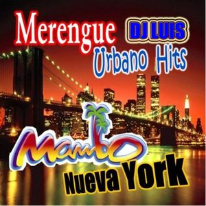 DJ LUIS MERENGUE MIX