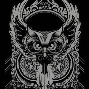 Night Owl Radio 014 With Paul Van Dyk Guest Mix