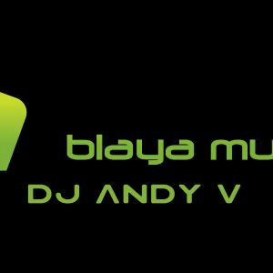 DJ Andy V - Spring Session vol3 2012 [Blaya Music]
