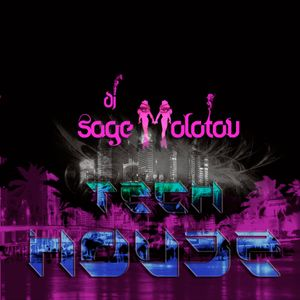 DJ Sage Molotov-  Beatport Selections - January 2011