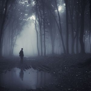 Thom Brennan - Cedars Stand Against the Rain (Alexy.Nov remix)